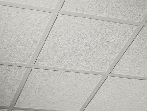 Accoustic Ceilings
